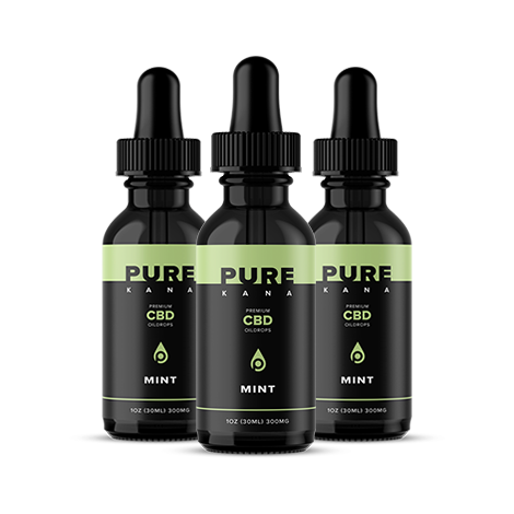 Mint CBD Oil 300mg Bundle 3x